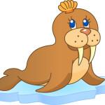 Smiley Walrus - The D&L Crew